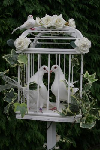 wedding-cage-for-up-to-2-dove