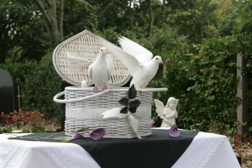 favourite-doves-in-heart-shaped-basket