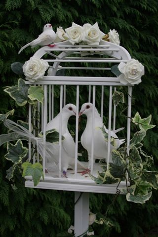 favourite-of-two-doves-in-cage-smaller-version